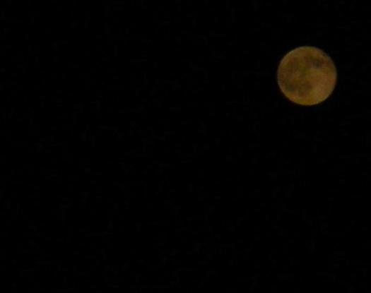17の満月.jpg