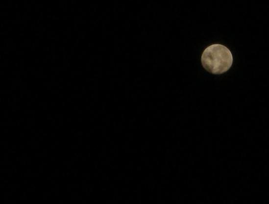 18の満月.jpg